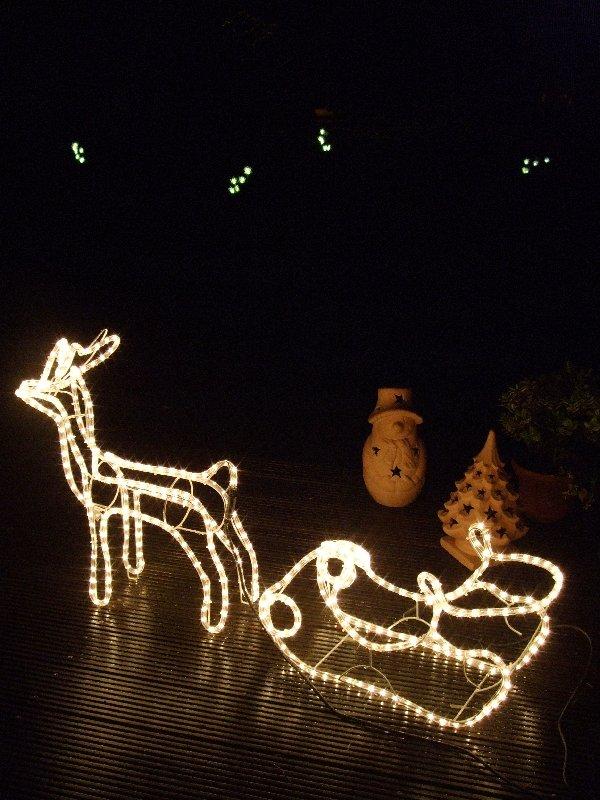 Rudolf mit Schlitten vor Lichtern im Garten