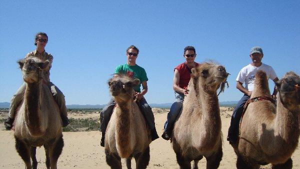 Europäische Kamelreiter in der Mongolei