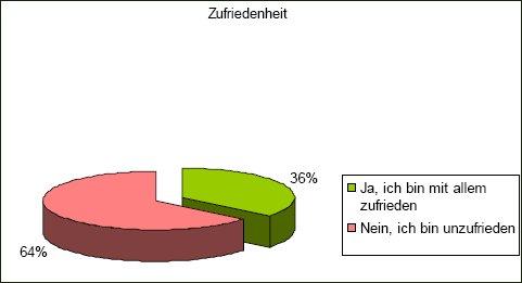 Sarah Schlifter, Umfrage Freie Journalisten: Zufriedenheit