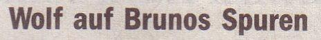 Welt, 17.05.10, Titel: Wolf auf Brunos Spuren