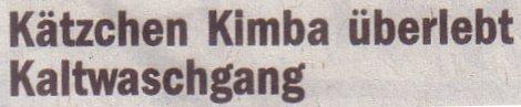 Die Welt, 28.05.2010, Titel: Kätzchen Kimba überlebte Kaltwaschgang