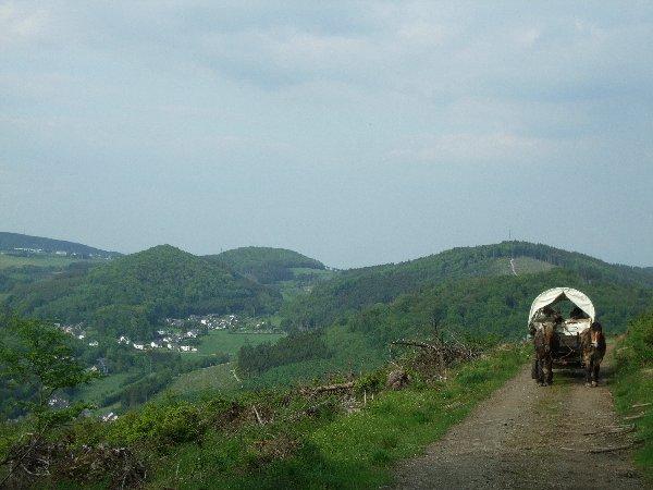 Blick von der Planwagenfahrt auf das Hochsauerland
