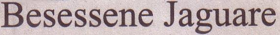 Süddeutsche Zeitung, 11.06.10, Titel: Besessene Jaguare