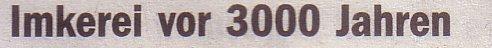 Die Welt, 08.06.10, Titel: Imkerei vor 3000 Jahren