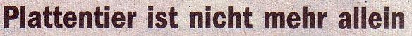 Die Welt, 10.07.10, Titel: Plattentier ist nicht mehr allein