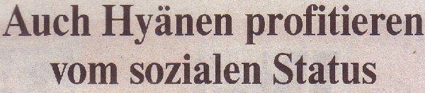 Die Welt, 24.08.2010, Titel: Hyänen profitieren vom sozialen Status