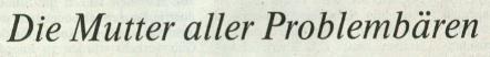 Die Welt, 06.09.2010, Titel: Die Mutter aller Problembären