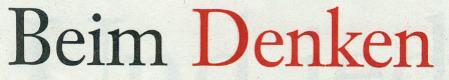 Frankfurter Allgemeine Sonntagszeitung, 03.10.10, Titelteil: Beim Denken...