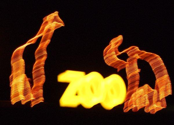 Nächtliches Zooschild, leicht verwackelt