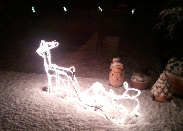 Das Rentier mit Schlitten steht abflugbereit im Schnee