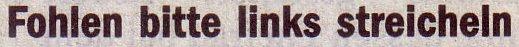 Die Welt, 18.11.10, Titel: Fohlen bitte links streicheln