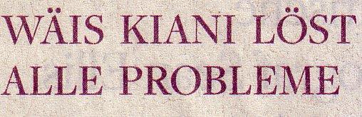 Welt am Sonntag, 12.12.2010, Titel: Wäis Kiani löst alle Probleme