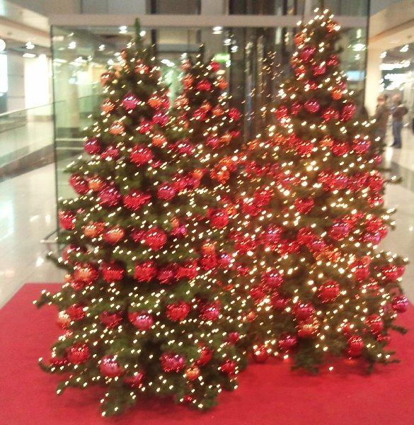 Weihnachtsbäume am Flughafen