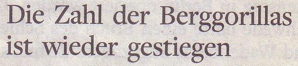 Die Welt, 09.12.2010, Die Zahl der Berggorillas ist wieder gestiegen