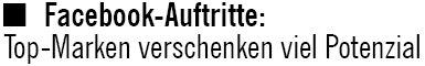 Czerwensky intern, 01.02.2011, Titel: Facebook-Auftritte: Top-Marken verschenken viel Potenzial