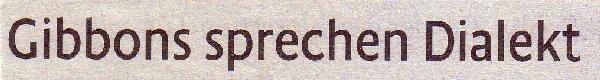 Kölner Stadt-Anzeiger, 12.02.2011, Titel: Gibbons sprechen Dialekt