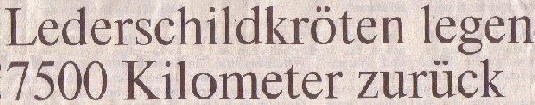 Rheinische Post, 19.01.2011, Titel: Lederschildkröten legen 7500 Kilometer zurück