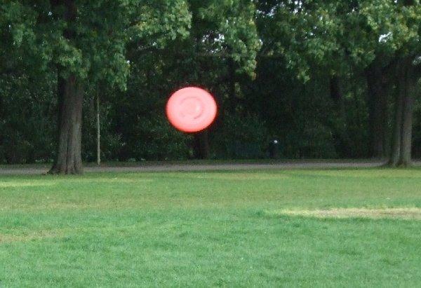 Rote Frisbee fliegt durch den Kölner Blücherpark
