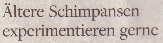 Welt am Sonntag, 20.03.2011, Titel: Ältere Schimpansen experimentieren gerne