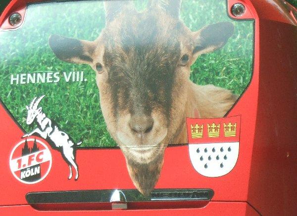 Nahansicht des Hecks des 1. FC Köln-Mannschaftsbusses