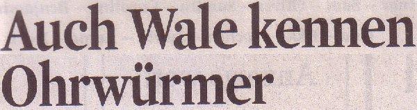 Kölner Stadt-Anzeiger, 15.04.2011, Titel: Auch Wale kennen Ohrwürmer