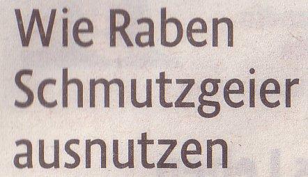 Kölner Stadt-Anzeiger, 16.04.2011, Titel: Wie Raben Schmutzgeier ausnutzen