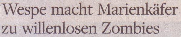 Welt am Sonntag, 31.07.11, Titel: Wespe macht Marienkäfer zu willenlosen Zombies