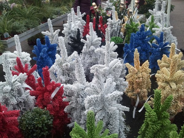Bunte Mini-Weihnachtsbäume