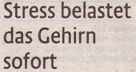 Kölner Stadt-Anzeiger, 30.01.2012, Stress belastet das Gehirn sofort